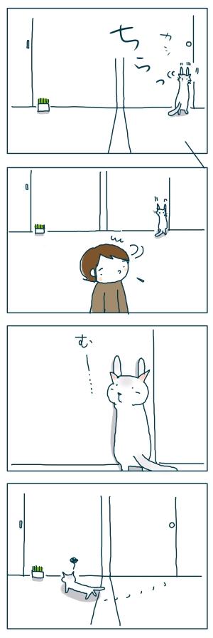 猫と一緒-20081227-03