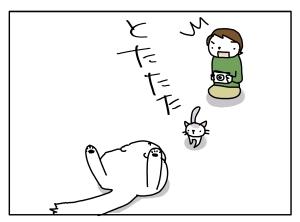 猫と一緒-20111104_07