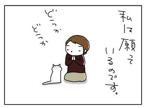 猫と一緒-20100416_01