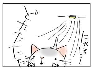 猫と一緒-20131105_06