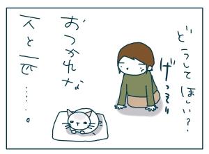 猫と一緒-20090707_02