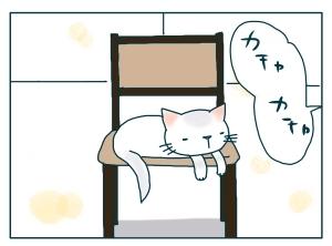 猫と一緒-20091214_09