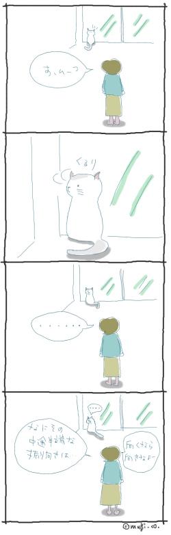 猫と一緒-20061101