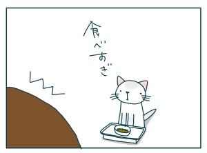 猫と一緒-20091119_14
