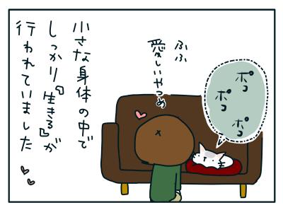 20190109_05
