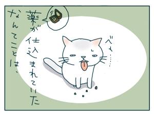 猫と一緒-20090821_09