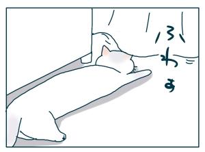 猫と一緒-20090718_15