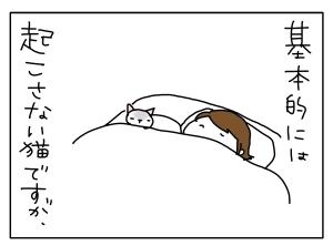 猫と一緒-20130529_01