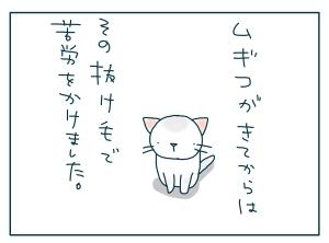 猫と一緒-20090914_02