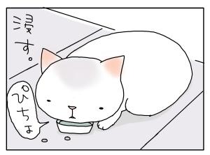 猫と一緒-20100217_16