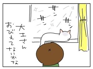 猫と一緒-201012120_03