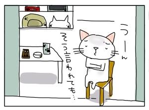 猫と一緒-20101115_07