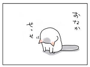 20161128_03