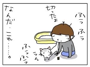猫と一緒-20130703_06