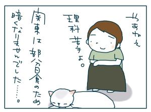 猫と一緒-20090722_09