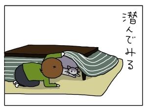 猫と一緒-20121210_06