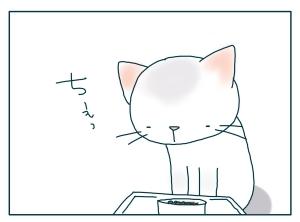 猫と一緒-20090929_10