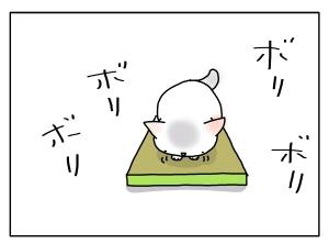 猫と一緒-20130329_04