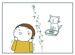 猫と一緒-20091119_16
