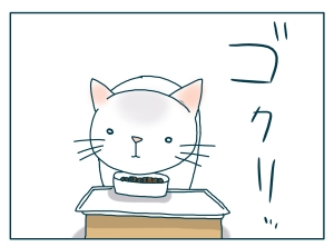 猫と一緒-20090809_02