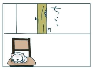 猫と一緒-20091219_03