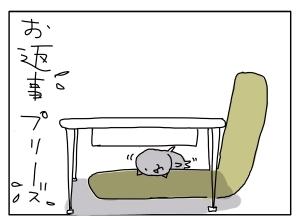 猫と一緒-20110126_17