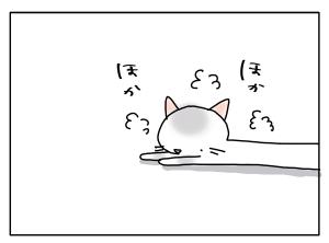 猫と一緒-20110704_01