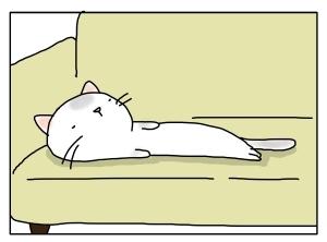 猫と一緒-20110318_07