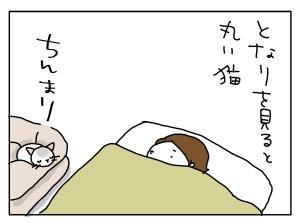 猫と一緒-20111013_02