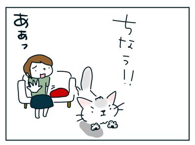 20190823_04