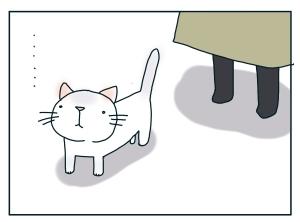猫と一緒-20100127_09
