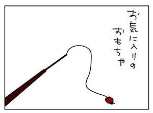 20170531_01
