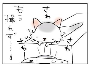 猫と一緒-20110620_06