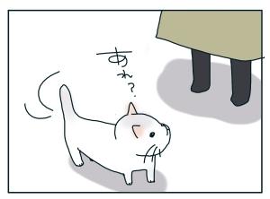 猫と一緒-20100127_10