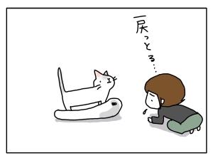 猫と一緒-20110520_10