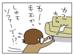 猫と一緒-20130227_02