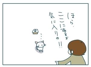 猫と一緒-20090924_19