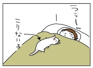猫と一緒-20120418_06