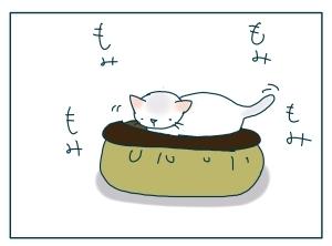 猫と一緒-20091114_06