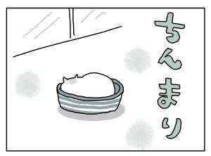 猫と一緒-20131021_02