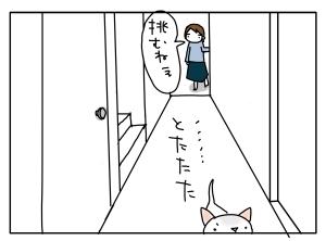 猫と一緒-20100531_12
