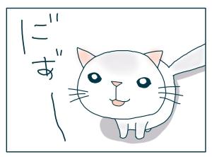 猫と一緒-20090728_06