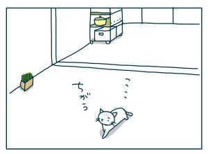 猫と一緒-20090718_06