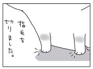 猫と一緒-20110801_04