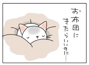 猫と一緒-20111013_03