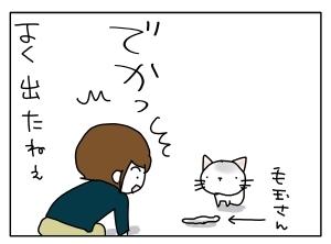 猫と一緒-20110520_08