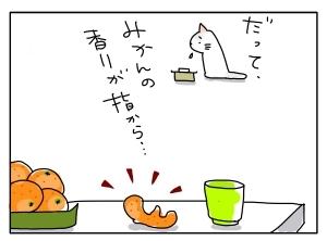 猫と一緒-20101108_14