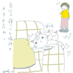 猫と一緒-20080109