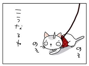 猫と一緒-20110427_05