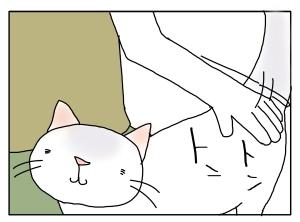 猫と一緒-20100913_03